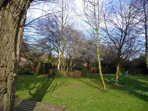 Sheila Russell Centre Garden.